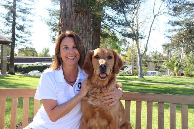 Canine Development Lead