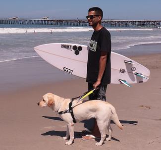 surfer, rabelo