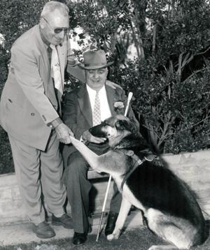 2 men, dog, guide dog