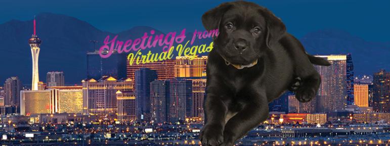 Virtual Vegas Fundraiser